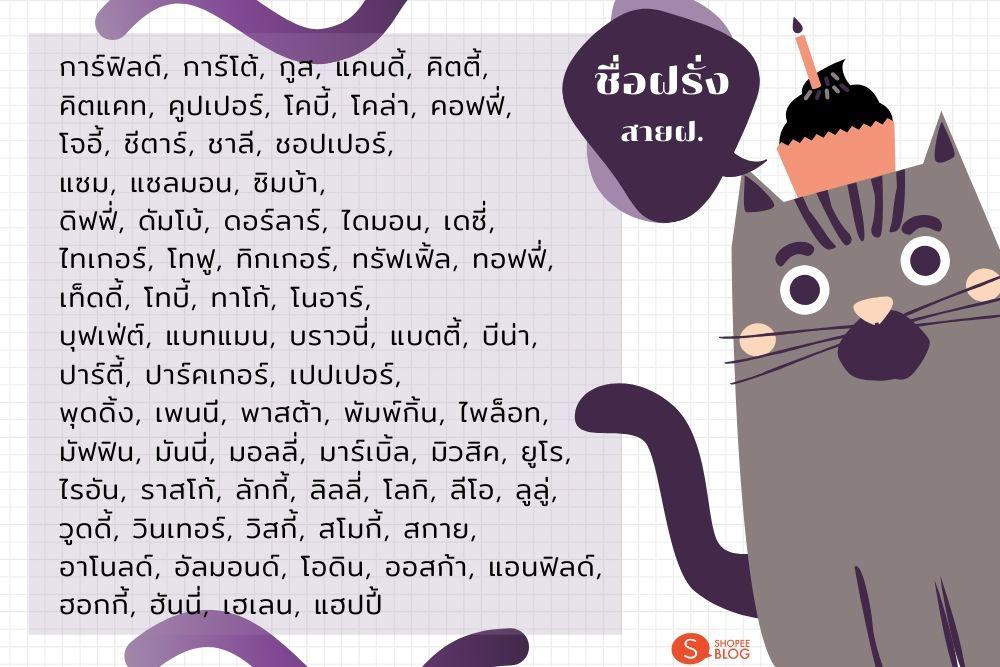 ตั้งชื่อแมวสไตล์ฝรั่ง