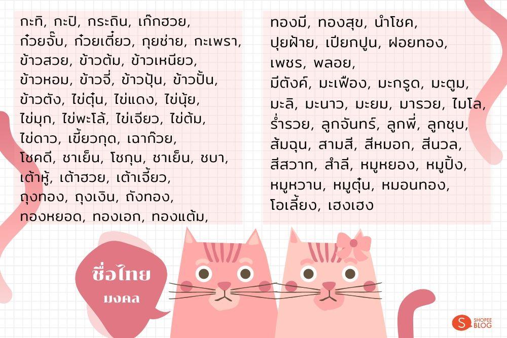 ตั้งชื่อแมว_สไตล์ไทย
