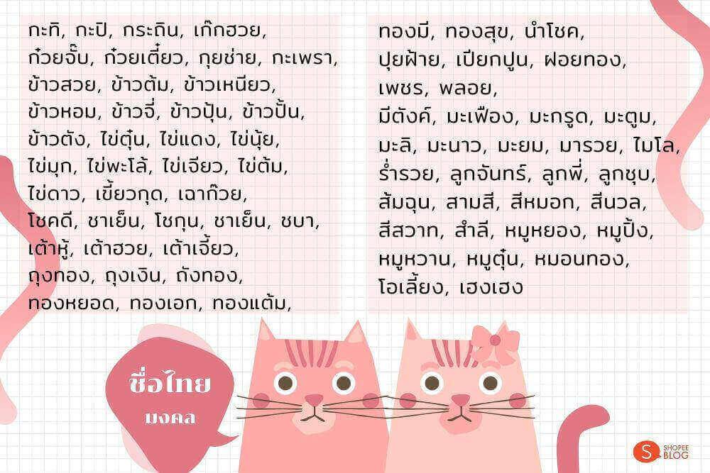 ตั้งชื่อแมวเหมียวสไตล์ไทย
